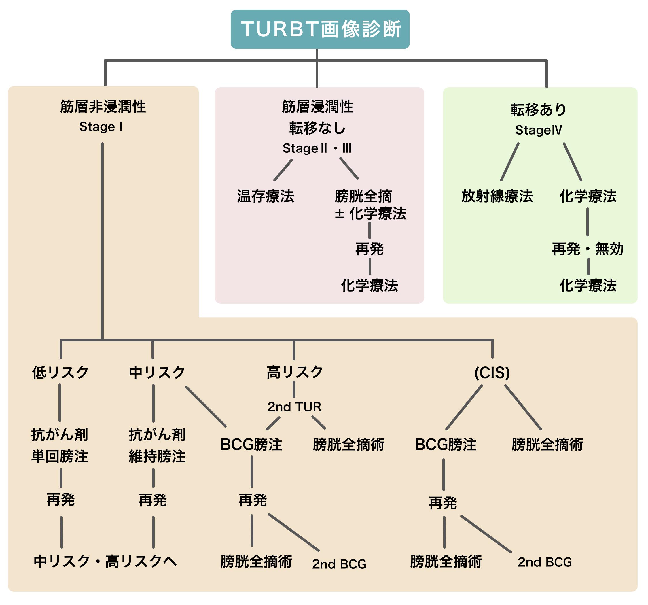 図:膀胱がんの治療方針の選び方。