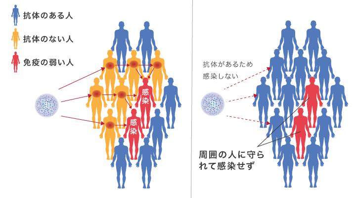 図:抗体のある人が多いと免疫の弱い人を守ることになる。