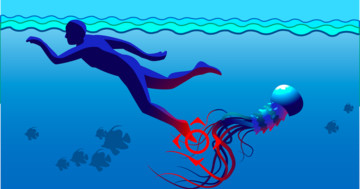 クラゲに刺されたらどうする? 応急手当を解説の写真