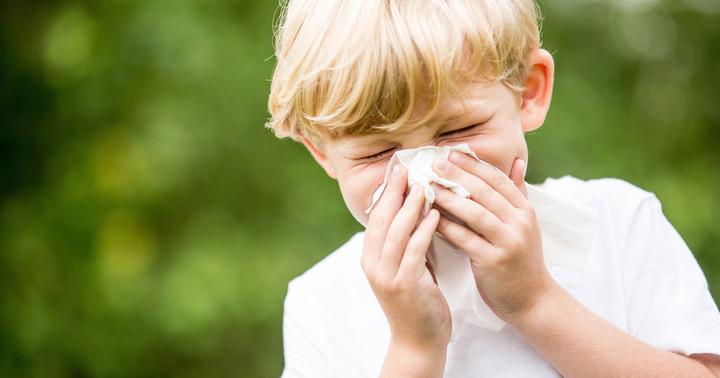 花粉症は治せるの? 症状がおさまった今こそ始めたい舌下免疫療法の効果と費用とはの写真
