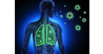 人工呼吸器、ECMO(エクモ)とは? 重症肺炎に対する呼吸サポート治療についての写真