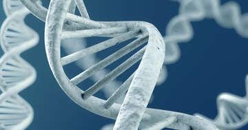 第2の「CAR-T」免疫療法、悪性リンパ腫に対してアメリカで承認