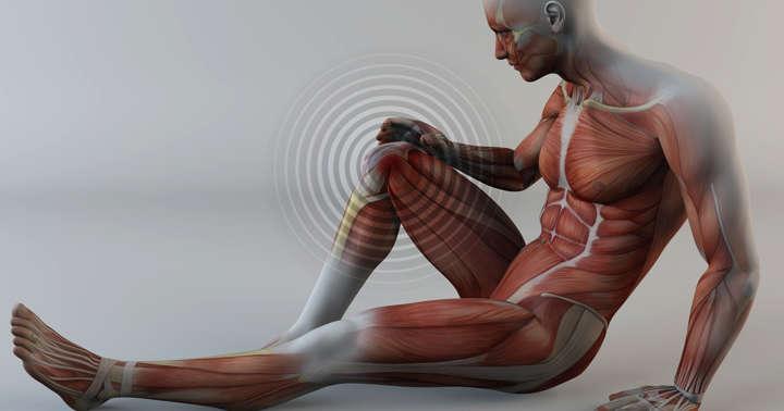 グルコサミンは膝・股関節の変形性関節症の痛みに効かないの写真