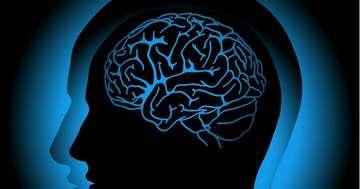 がんが脳に転移、手術後の定位放射線治療は有効?の写真