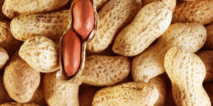 乳児期にピーナッツを食べるとピーナッツアレルギー発症者が減った!の写真