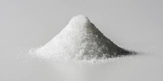 子どもへの指導で、親子の減塩に成功の写真