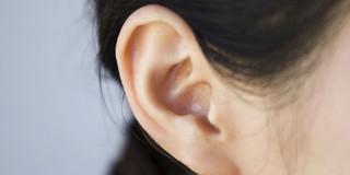 骨粗しょう症があると突発性難聴リスクが約1.8倍に!の写真