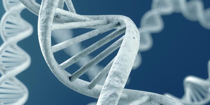 クローン病は原発性免疫不全症と関係していた?の写真