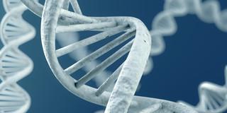 クローン病は原発性免疫不全症と関係していた?