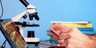 食道がんを画像解析ソフトで診断する試みの写真