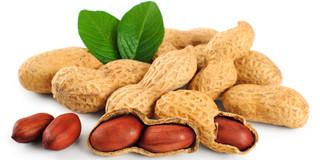 乳幼児のピーナッツアレルギーの経過を予測する検査基準が分かった?の写真