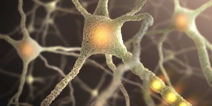 楽しい記憶を活性化させる新技術で、うつ状態が改善したの写真