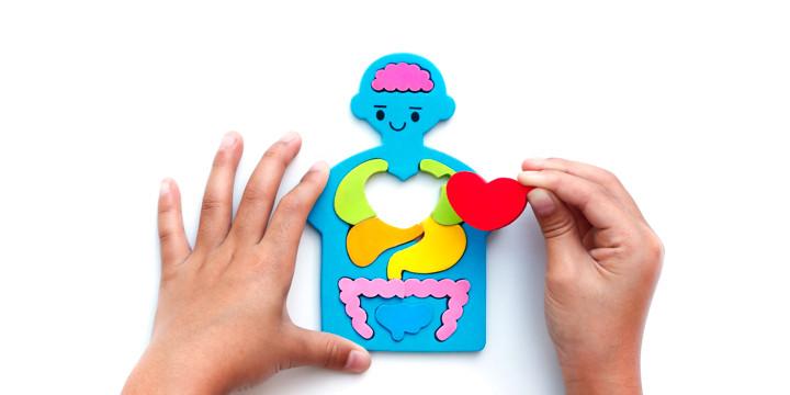 子どもの心臓を助ける補助人工心臓「EXCOR」とは?の写真