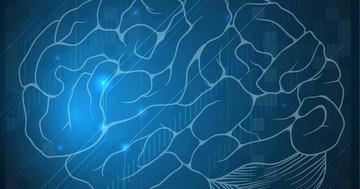 脳卒中後の失語に対して、脳の「ブローカ野」への両側の磁気刺激が有効 の写真