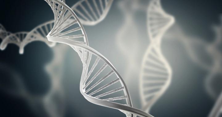 健康な皮膚の細胞の遺伝子には、既にがんの原因となる変異が多数あったの写真