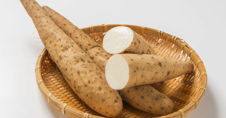 ナガイモの成分が抗がん剤の副作用を和らげる?抗がん剤ドキソルビシンの心毒性に対しての写真