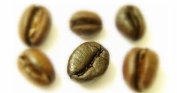 コーヒーに含まれるクロロゲン酸とクロム、肥満や糖尿病への効果は?の写真