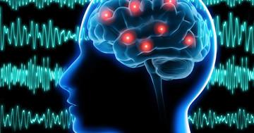てんかんの手術の効果を脳画像で予測できる?脳波-fMRI同時計測からの写真