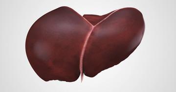 肝臓がんが年間8%も発症してしまう肝硬変に至ったC型肝炎のリスクを下げる治療法は?の写真