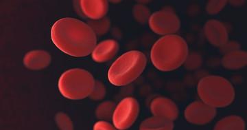 体に鉄がたまるヘモクロマトーシスを改善した薬は?の写真