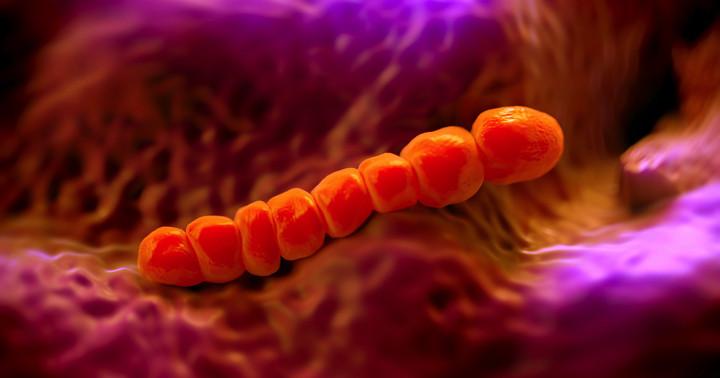 気をつけたい病気「人食いバクテリア」とは?医師が解説する症状・予防・感染対策・治療法のまとめの写真
