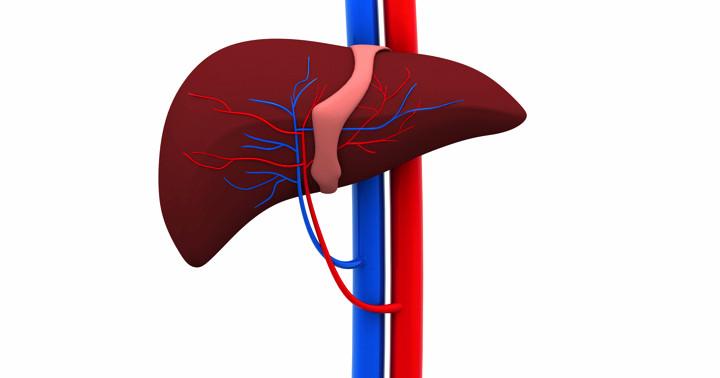 肝臓がんの治療法、肝動脈塞栓術で生存率は向上する の写真