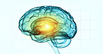 脳の磁気刺激で脳卒中の半側空間無視が改善する の写真