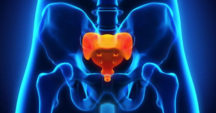 仙骨神経に磁気刺激を行うと女性の尿失禁が改善する? の写真