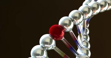 急性骨髄性白血病の治療後、細胞の遺伝子変異を見るとリスクがわかる?の写真