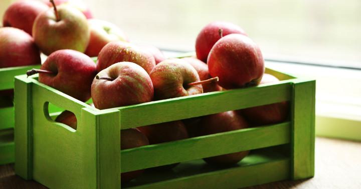 リンゴのポリフェノールで体重・コレステロール・中性脂肪が減少の写真