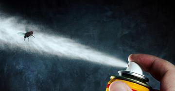 殺虫剤・除草剤で子どもの白血病が増える?の写真