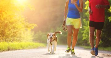 毎週2.5時間の運動でがん死亡率減少 の写真