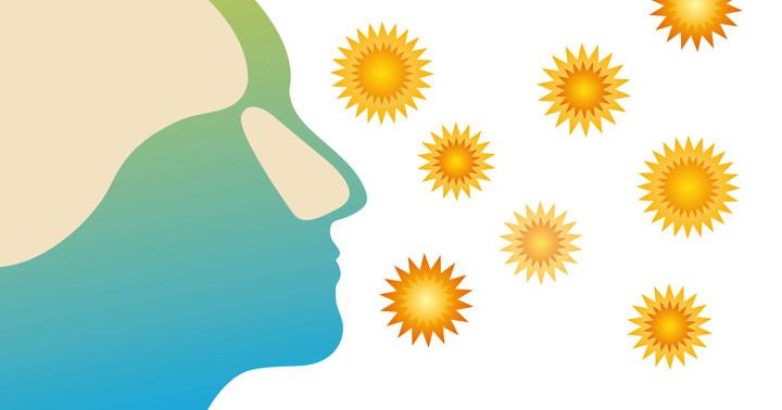 花粉症と死亡率は関係がある? の写真