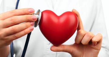 イベルメクチンで救命、フィラリアが心臓の拍動を阻害していたの写真