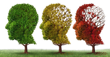 統合失調症は認知症発症と関係する? の写真