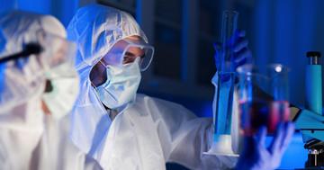 幹細胞とは何か?(5)ファン・ウソク事件の写真