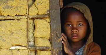 日本発のインフルエンザ薬がアフリカのウイルス感染症に?ファビピラビルのラッサ熱に対する効果の写真
