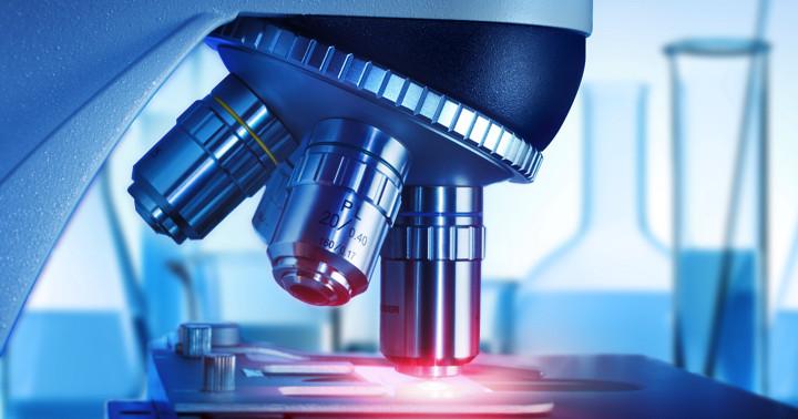 幹細胞とは何か?(6)iPS細胞の登場の写真