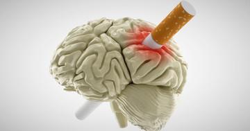 原因不明の脳卒中には喫煙が関連していた? の写真