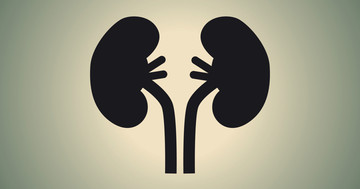 慢性腎臓病に見られるアミノ酸とビタミンの特徴とは? の写真