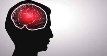 免疫グロブリンが脳を守る?アルツハイマー病との関係はの写真