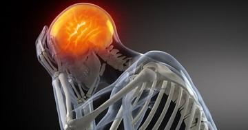 骨の損傷より脳損傷のほうが職業に影響しやすい の写真