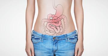 慢性心不全の患者さんは腸内環境がわるい?の写真