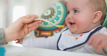 幼児期の肥満は離乳後のタンパク質摂取量と関係?の写真