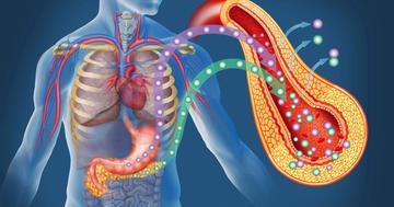 糖尿病治療薬の特徴と副作用とは?診断基準もチェックの写真