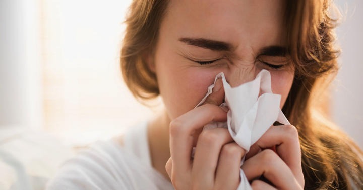 アレグラ、アレロック、アレジオンなど花粉症の治療薬を解説の写真