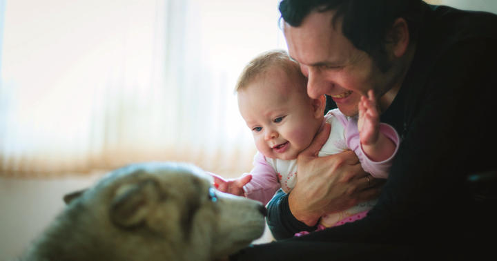 赤ちゃんが生まれるとき、家にペットがいるとアレルギーの心配はある?の写真