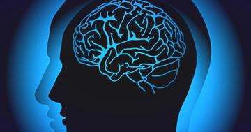 若いころの活動によって脳の変化が違う?アルツハイマー病の特徴を画像で観察の写真