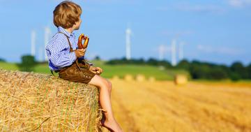 伝統的な農家の微生物が喘息を予防するって本当?の写真