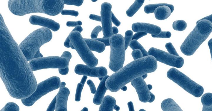 抗生物質が効かなかった人が9割治った!腸内細菌を活用する糞便移植の効果の写真